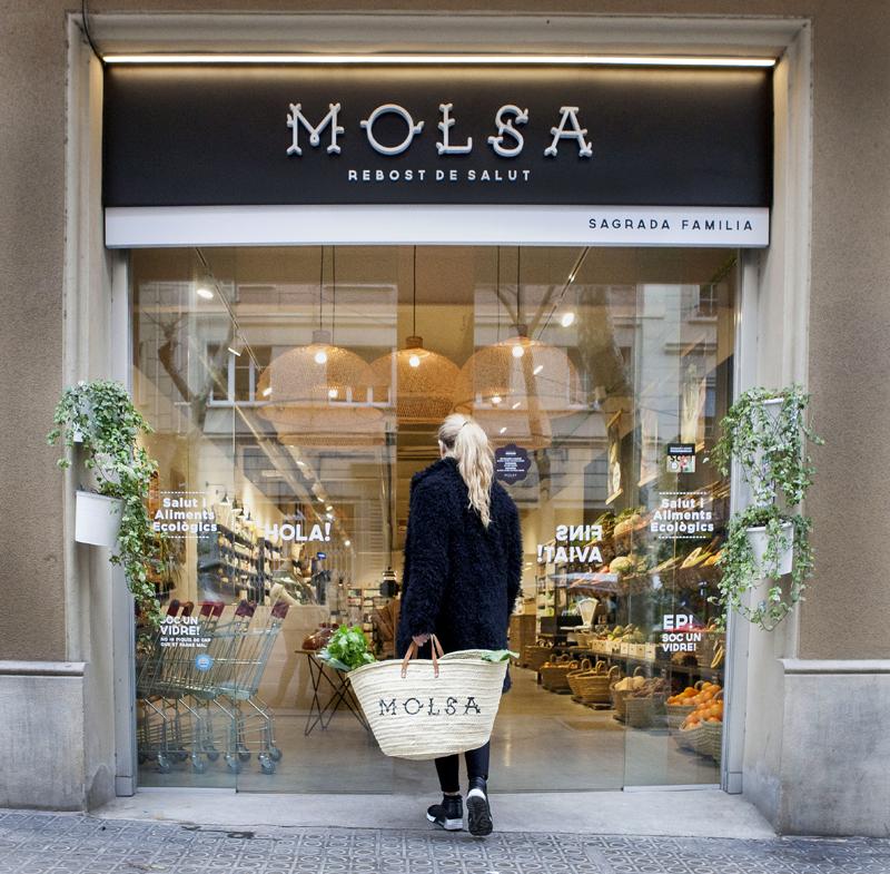 Home MOLSA 800